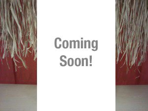 store-coming-soon